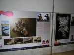One of the information boards on exhibition.