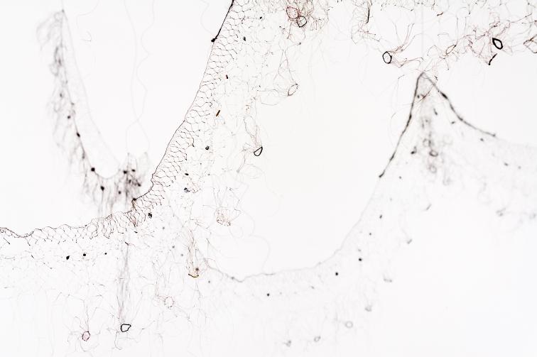 Detail of Tutu